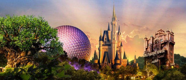 Disney is just ONE of the places in Florida to visit. Photo credit: Disney World website